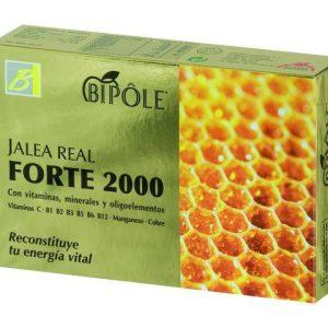 JALEA FORTE 2000 20 AMPOLLAS BIPOLE